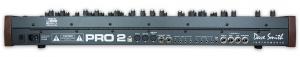DSI Pro 2 rear